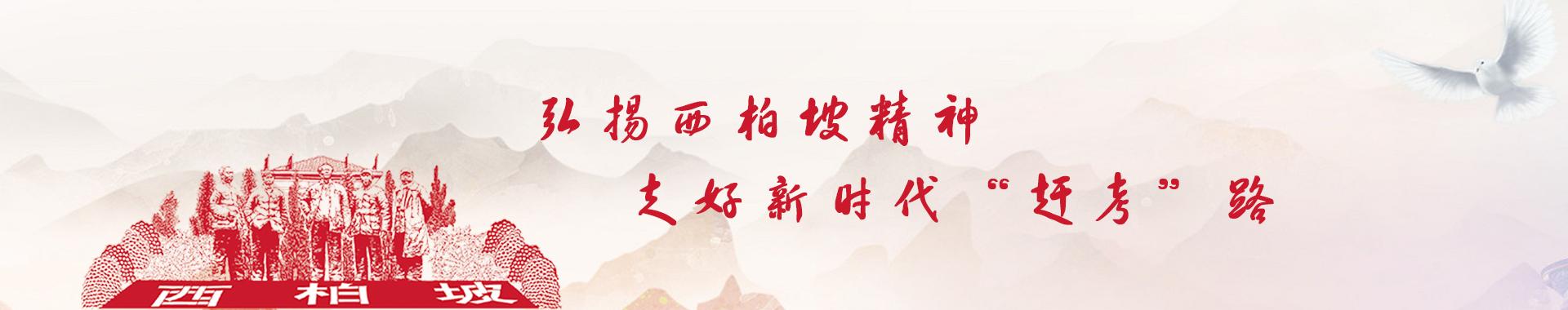 河北师大教育培训